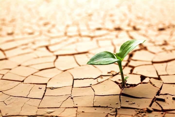 Crescere con le avversità