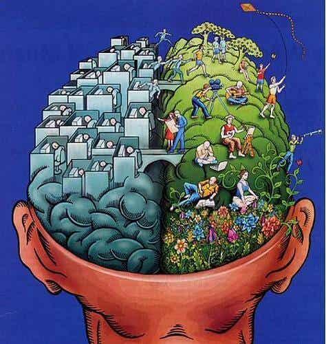 Emisferi cerebrali e personalità: sfatato un mito?
