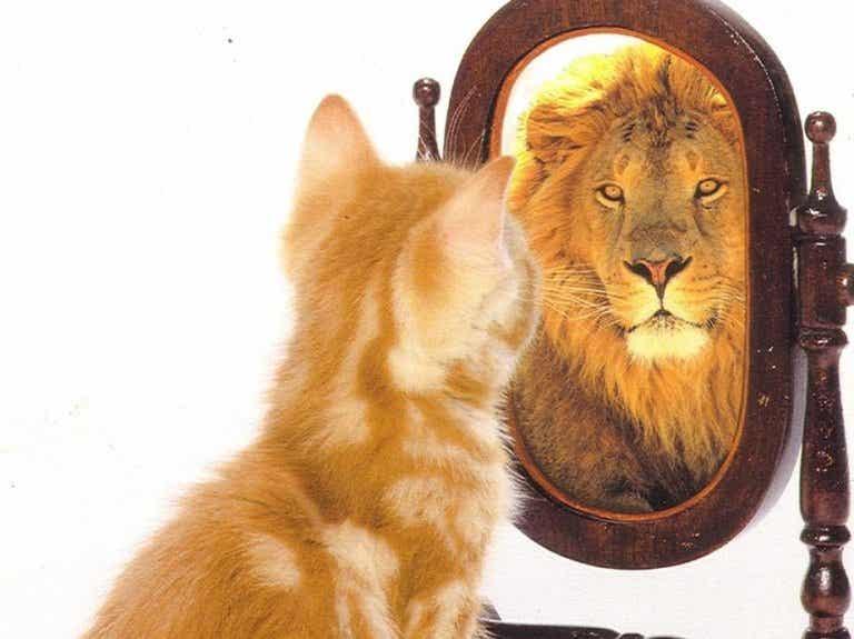 Autostima o egocentrismo?