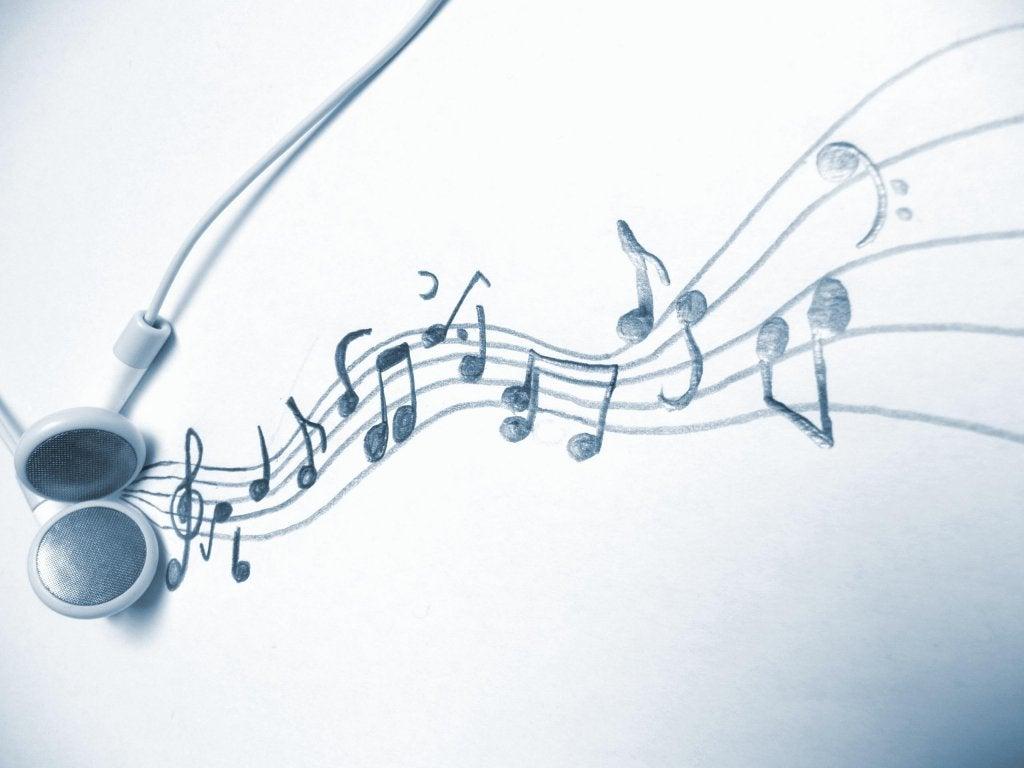 Perch ci piacciono diversi tipi di musica la mente meravigliosa - Diversi tipi di figa ...