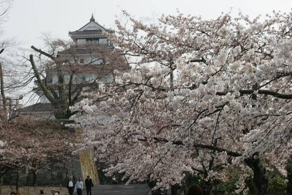 Le sette virtù del Bushidō  giapponese
