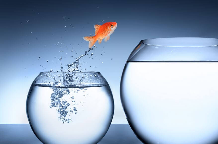 Gli ostacoli sono una buona opportunità per crescere