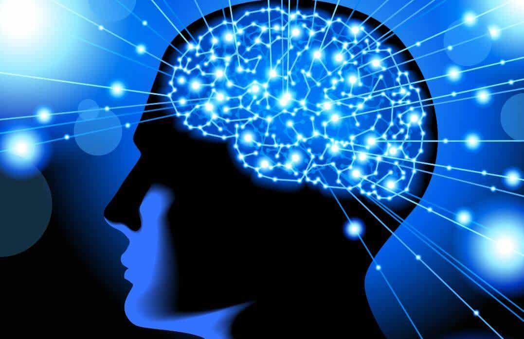 Dopo quest'articolo, non vedrete più la vostra mente nello stesso modo