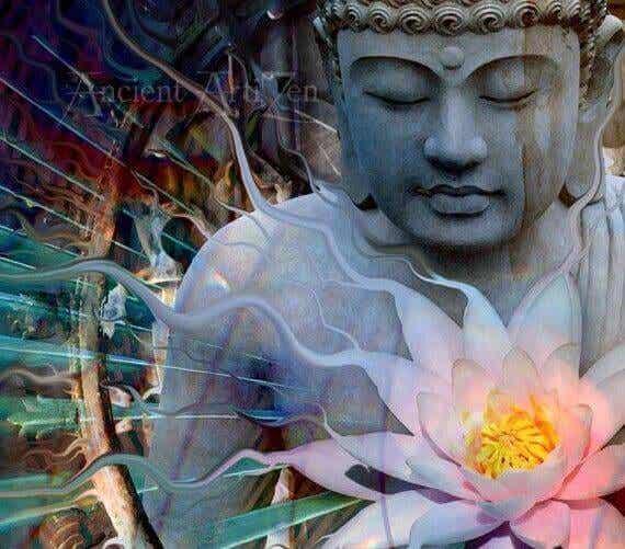 Le 4 nobili verità del Dharma