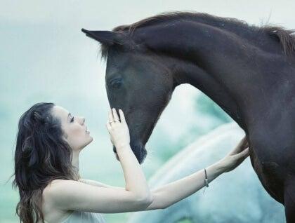 Amore-animali