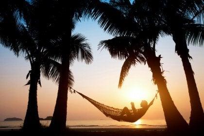 amaca tra le palme in una spiaggia