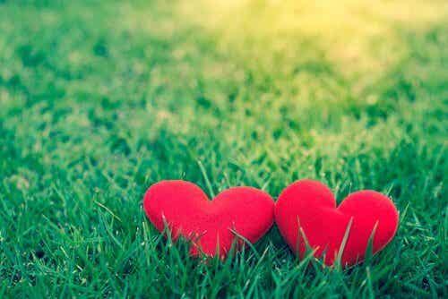 L'amore comporta sempre ammirazione?