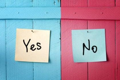 yes o no