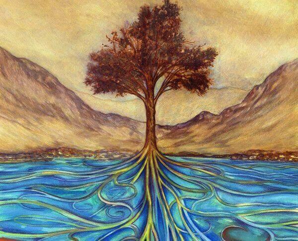 albero e radici