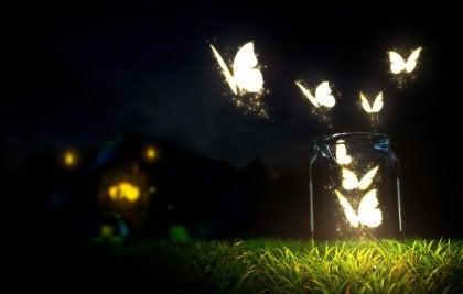 farfalle nel barattolo