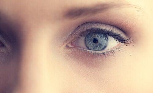 segreto pupille 3