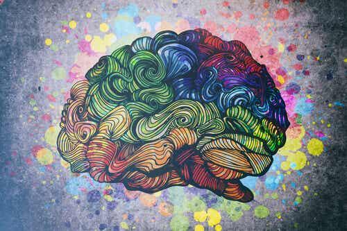 Scoprite i neuroni specchio