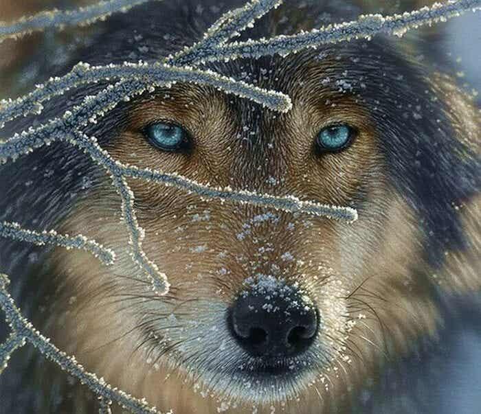"""Il """"lupo"""" dei vuoti: come affrontare tutte le perdite?"""