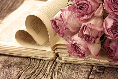 Libro-rose