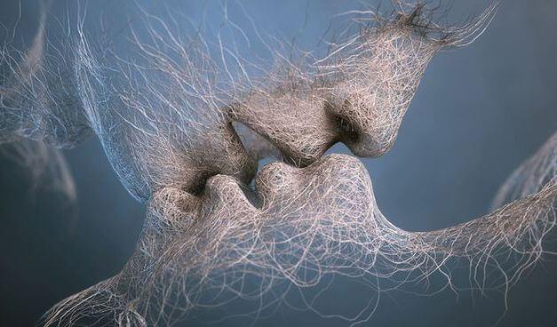 Lasciatevi invadere dall'amore senza dare spiegazioni