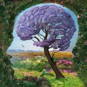 cervello in natura