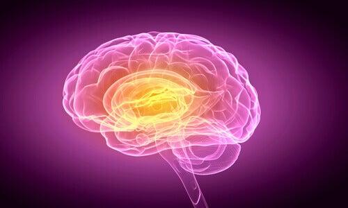 Anosognosia: incapacità di rendersi conto di avere un deficit