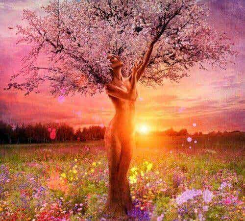 Le foglie cadono, ma l'albero resta sempre in piedi