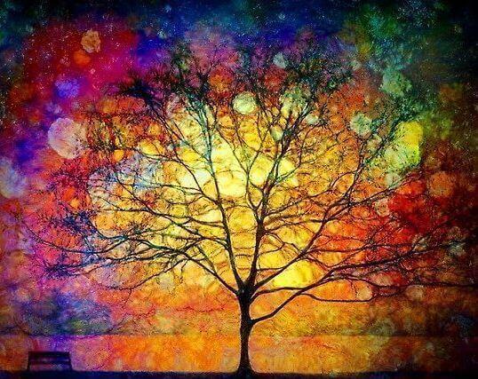 albero arcobaleno