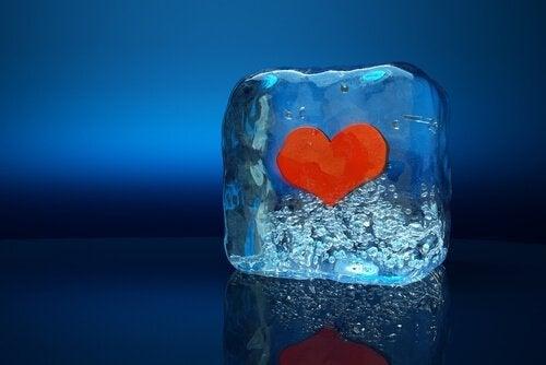 cuore in un cubetto di ghiaccio