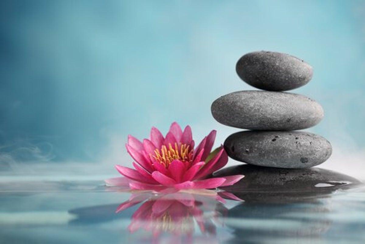 29 Frasi Zen Per Vivere In Modo Diverso La Mente E Meravigliosa
