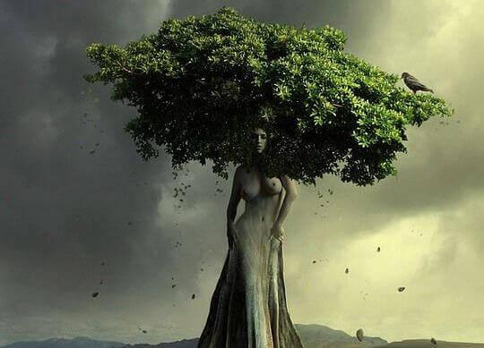 albero-a-forma-di-donna