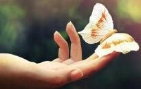 Amare significa offrirsi, non desiderare