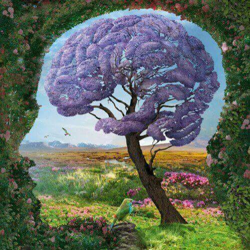 cervello e testa umana
