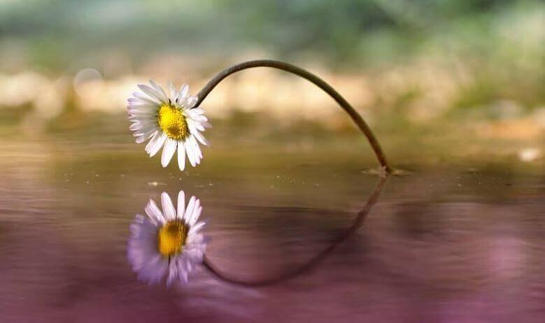 Il tempo dimostra che le cose belle possono arrivare in qualsiasi momento
