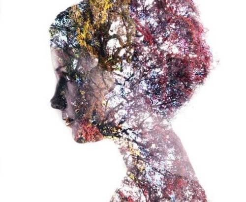 viso di donna fatto di rami