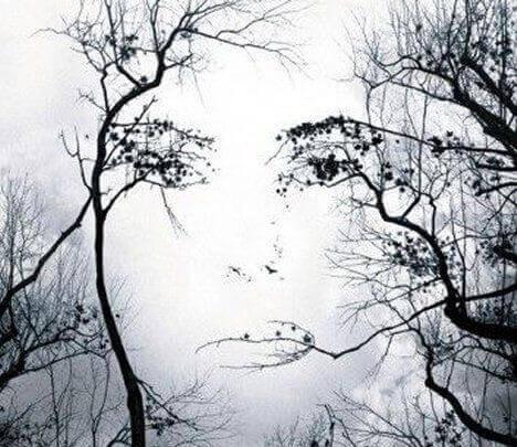 rami che disegnano volto di donna