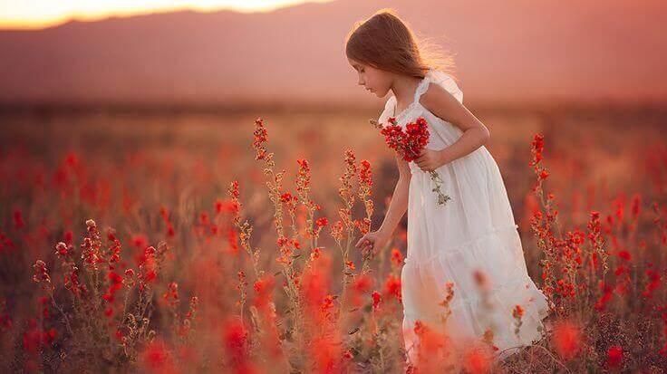 cicatrici bambina coglie fiori rossi in un campo
