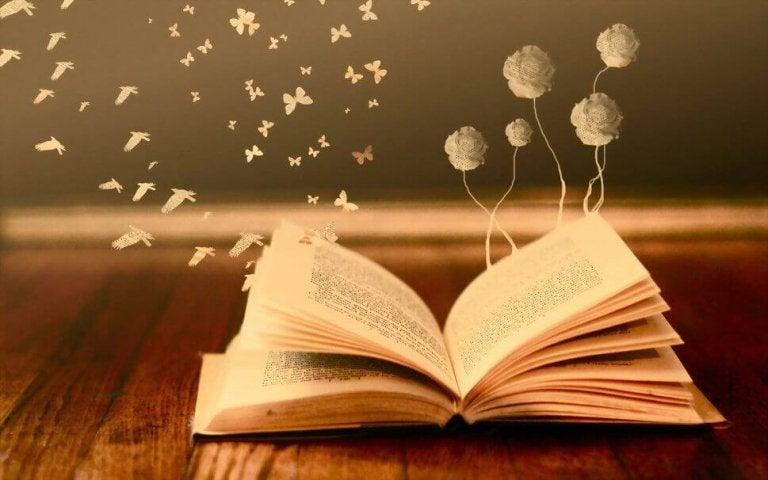 Da un libro vale sempre la pena farsi strappare una lacrima