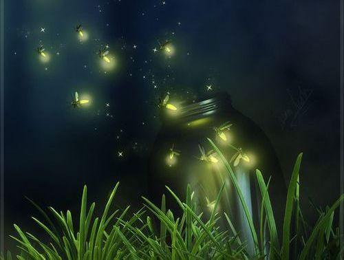 lucciole volano verso il cielo