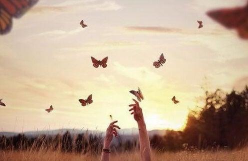 mani-che-avvicinano-farfalle-e1455365534937