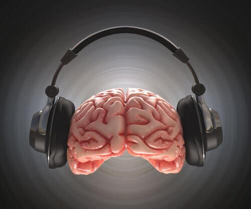 cervello e cuffie