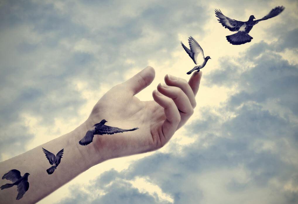 lasciare andare colombe che volano da un braccio