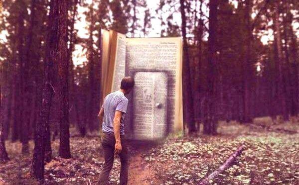 uomo davanti la porta di un libro gigante