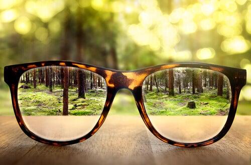 Vista di un paesaggio attraverso degli occhiali