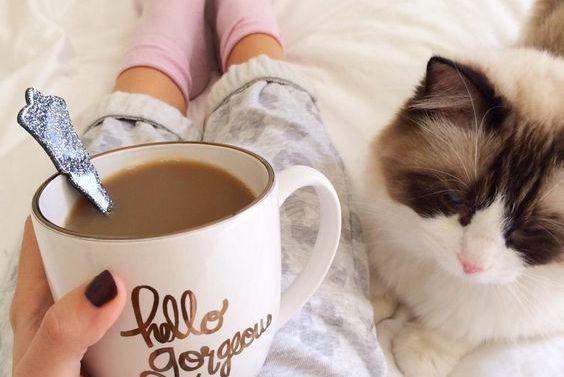 donna-beve-caffè-con-gatto