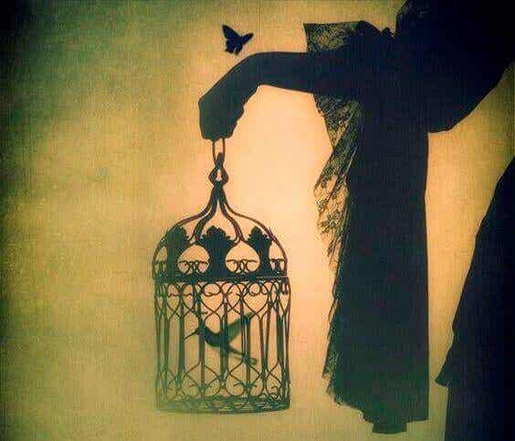 Un uccello nato in gabbia crede che volare sia una malattia