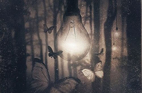 lampada-con-farfalle