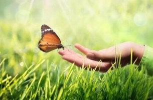 mano con farfalla superare la malattia
