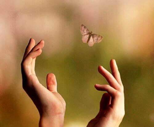 mani-farfalla