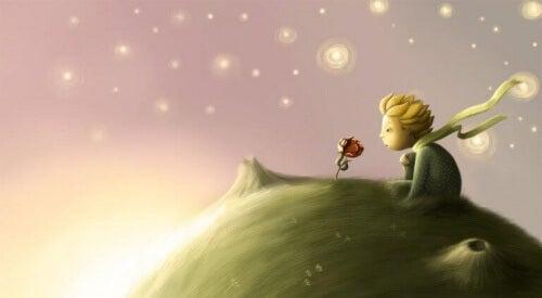 piccolo principe e rosa