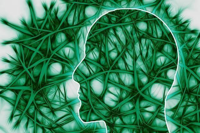 svuotare la mente profilo di testa