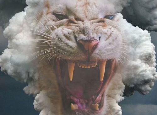 tigre bianca con la bocca aperta