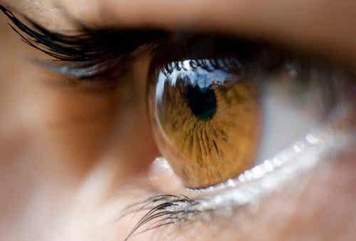 Cosa trasmette il colore degli occhi?