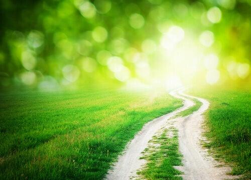 cammino-di-campagna