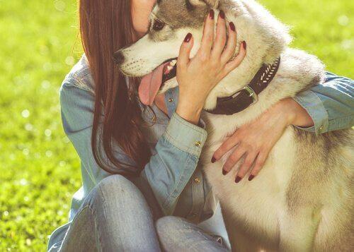 ragazza che abbraccia un husky